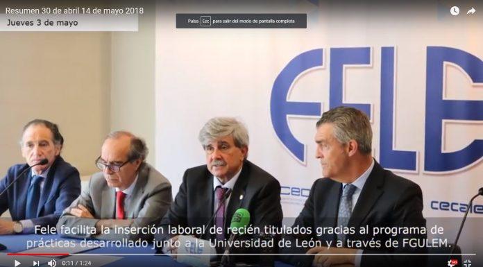 Resumen_fele_del_30_abril